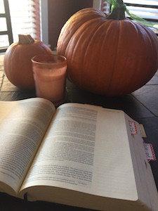 NIV Holy Bible Journal