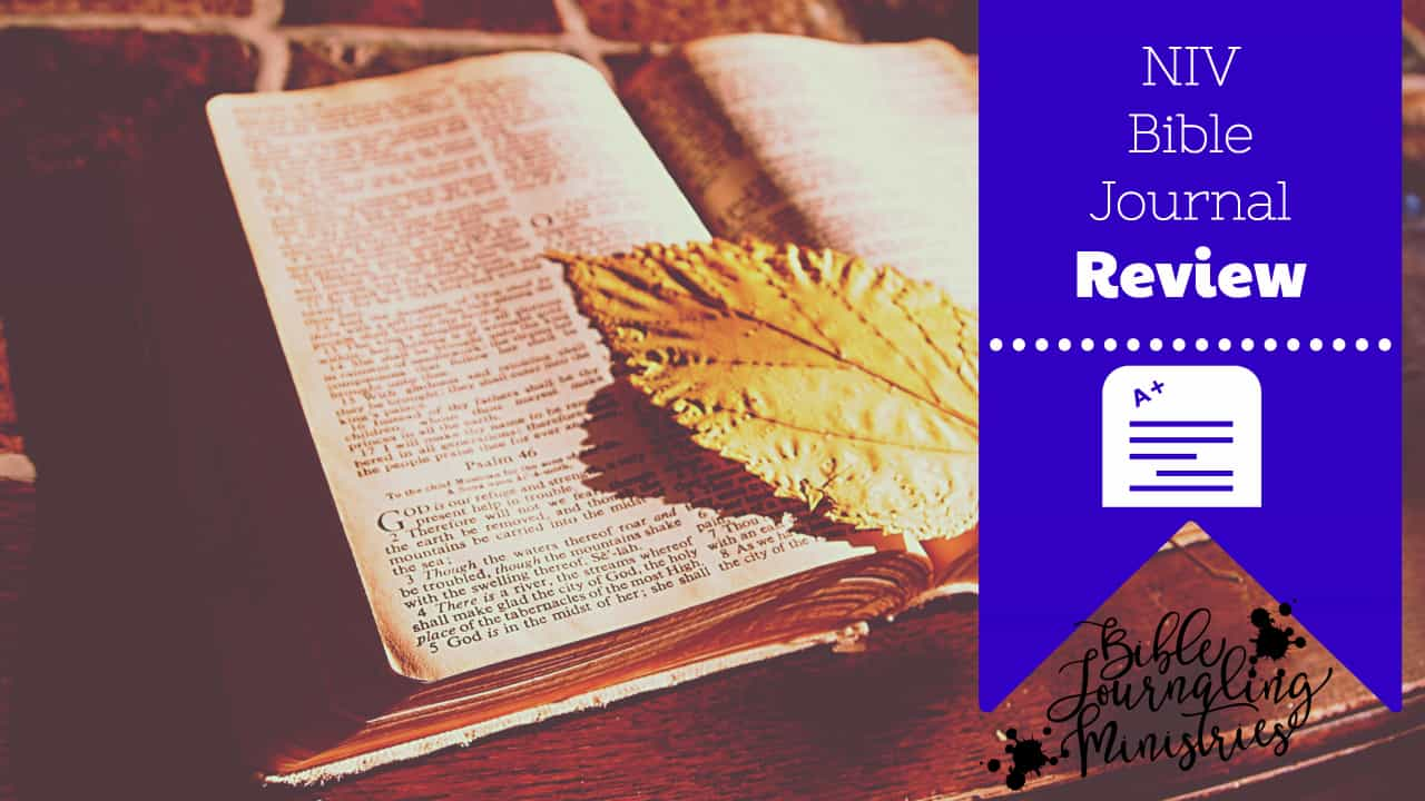 A Comprehensive Review of the NIV Holy Bible Journal