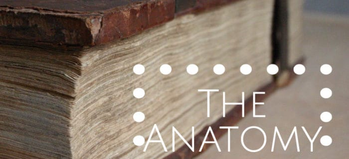 The Anatomy of a Bible – A Guide for Beginners