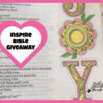 Bible Journaling for Beginners Facebook Group Giveaway