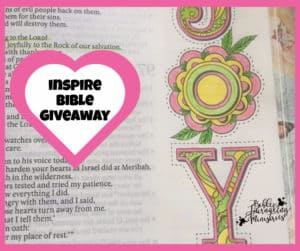 inspire bible giveaway