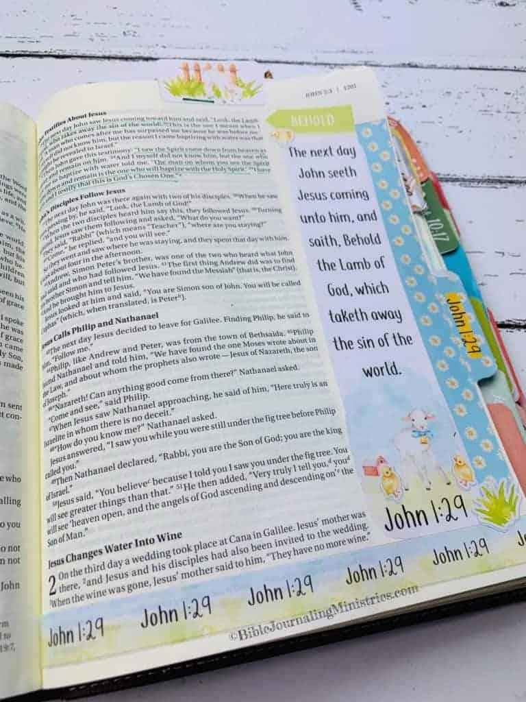 Merry Christmas Bible Devotional - John 1:29