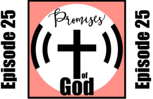 Episode 025: Confidence is Mediated by the Holy Spirit