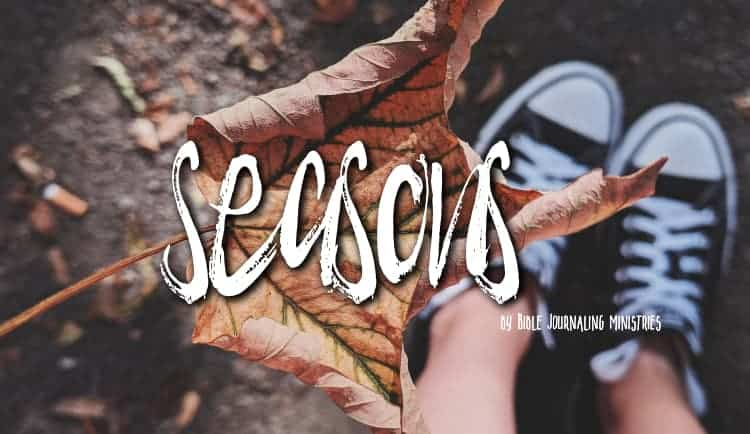 How to Adjust to Changing Seasons