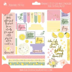Romans 8:18 Let God Make Lemonade Journaling Kit